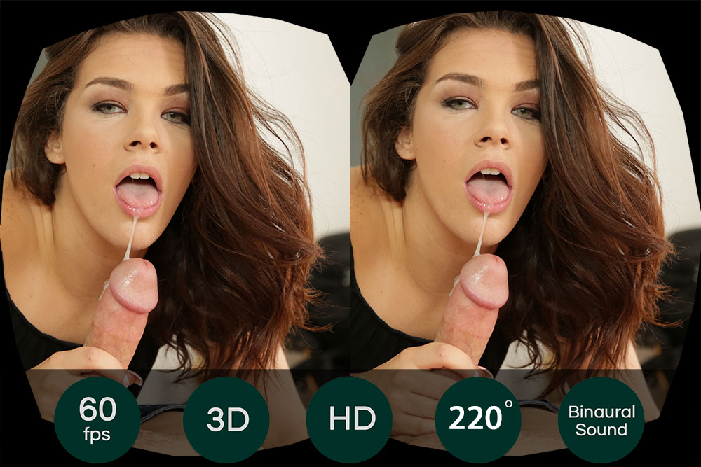 The GFE Collection: Stick It In VR Porn